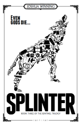 Splinter B+W